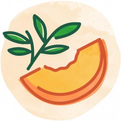 Bevi Peach White Tea Unsweetened thumbnail